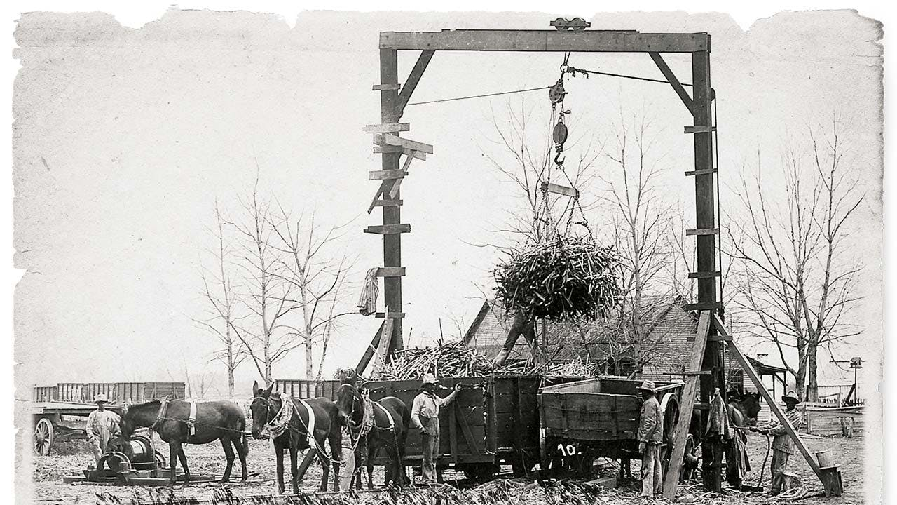 Convicts unloading a cane car at the Imperial Sugar Company's mill sometime around 1900. (Sugar Land Heritage Foundation)