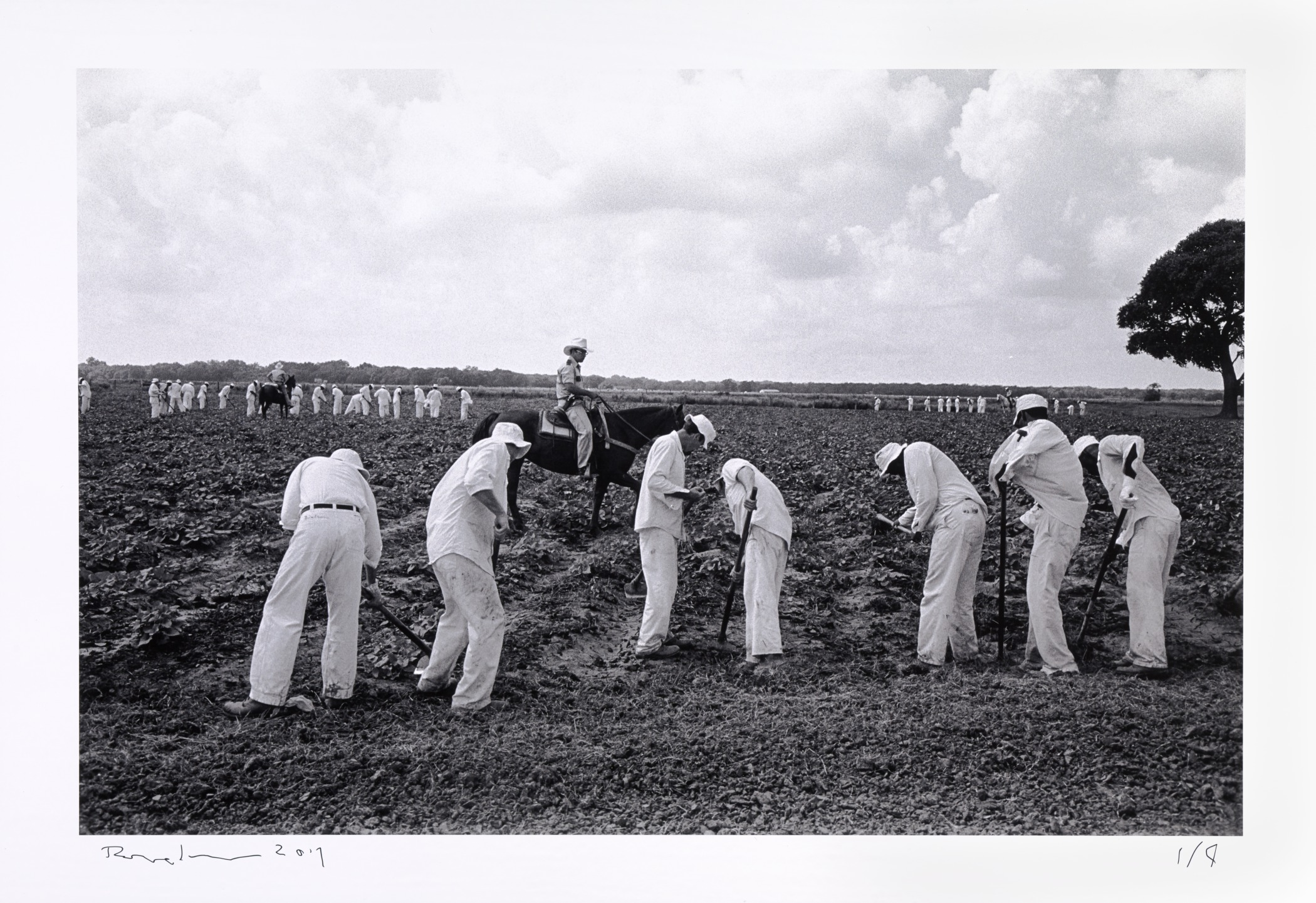 Even after the 1912 ban on Texas' convict leasing system, the prisoners were put to work. The state-owned prison farms continued to expand well into the 1950s. Ellis Prison Farm, Texas from the series Inside the Wire, 1978. Bruce Jackson. (printed 2017) (Collection Albright-Knox Art Gallery, Buffalo, New York. Gift of the artist, 2017) (source: https://www.albrightknox.org/artworks/p20176217-ellis-prison-farm-texas-series-inside-wire)